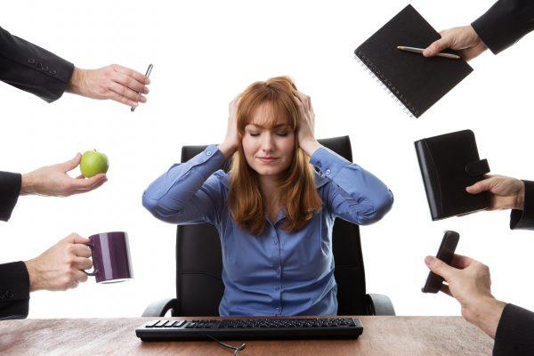 Chaos in der WIKI-Redaktion